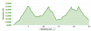 4-Pass Loop Elevation Profile